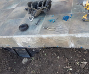 professional repairing the concrete steps damage caused by skunk in Kitchener