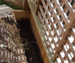 Skunk Deck Exclusion